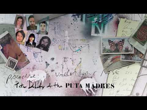 Peter Doherty & The Puta Madres - Paradise Is Under Your Nose (Official Audio)