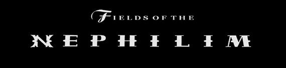 fields01.jpg