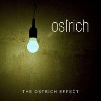 OSTRICH veröffentlichen ihr langerwartetes Debütalbum!
