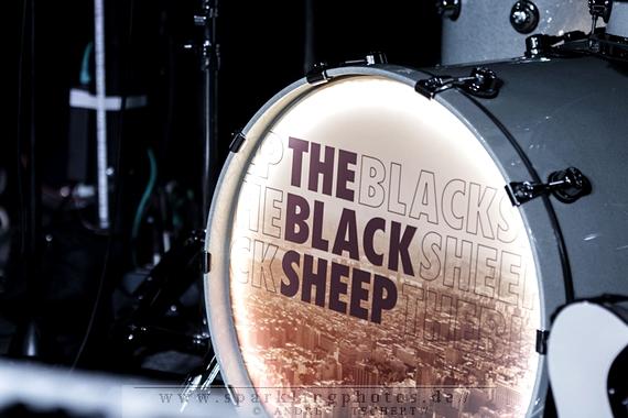 Neue Fotos: THE BLACK SHEEP, ASTAIRRE und ROADS & SHOES