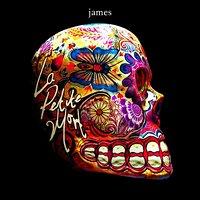 JAMES - La Petite Mort