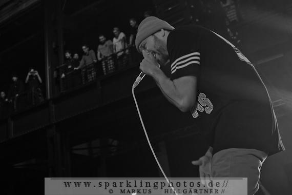 2014-11-19_Beatsteaks_Bild_018.jpg