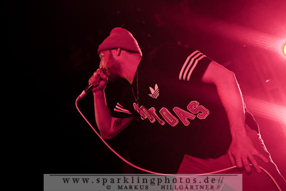 2014-11-19_Beatsteaks_Bild_019.jpg