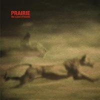PRAIRIE - Like A Pack Of Hounds