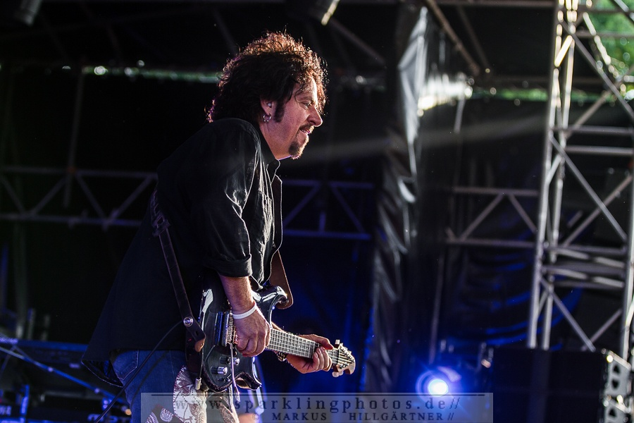 2015-06-15_Toto_-_Bild_014.jpg