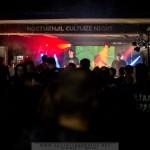 NOCTURNAL CULTURE NIGHT (NCN) 2015 - Deutzen, Kulturpark (04.-06.09.2015)