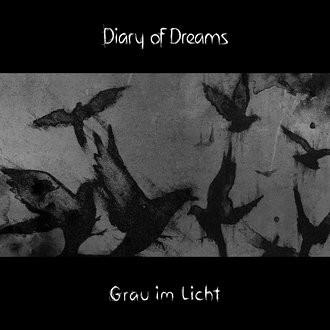 cover_2015_dod_grau_im_licht