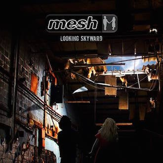 cover-Mesh-Looking-Skyward