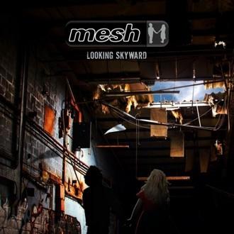 Mesh-LookingSkyward