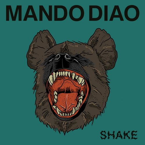 Neues Video: MANDO DIAO - Shake