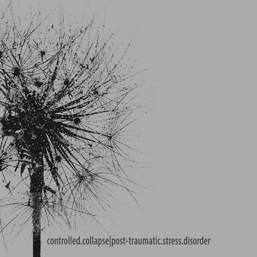 CONTROLLED COLLAPSE - Post-traumatic stress disorder