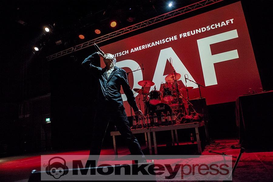 DAF, © Martina Peitz