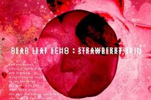 DEAD LEAF ECHO – neue Single, ein Re-Release und eine aktuelle Tour