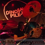 Fotos: DINOSAUR PILE-UP