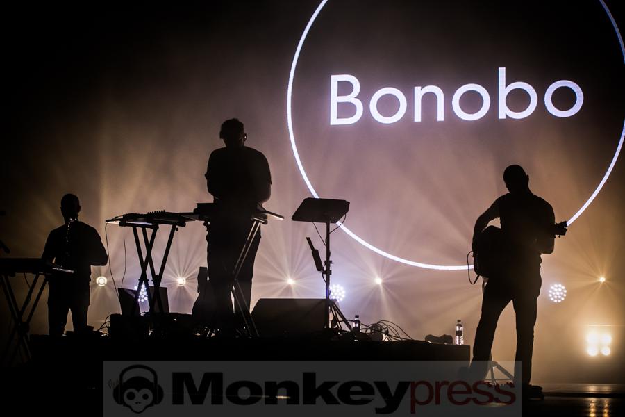 Bonobo, © André Techert