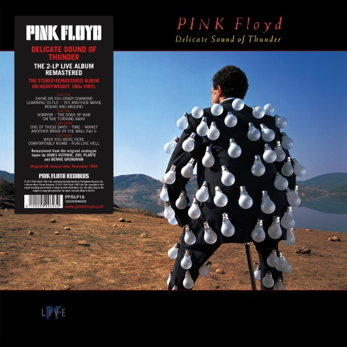 PINK FLOYD - Delicate Sound of Thunder (Doppel-LP)