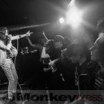 Fotos: TURBOWOLF