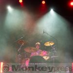 Fotos: THE WOMBATS