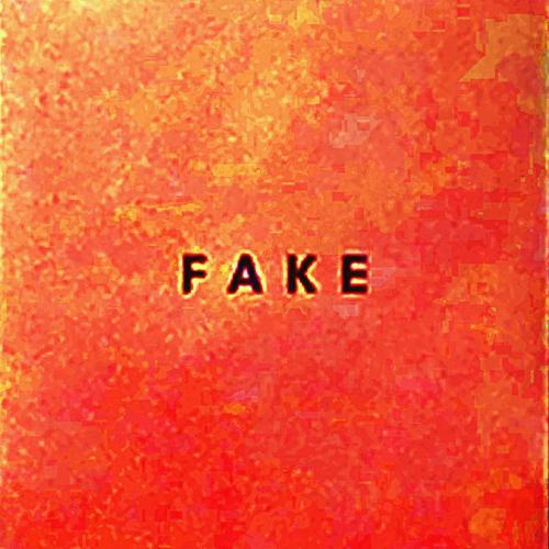 DIE NERVEN - Fake