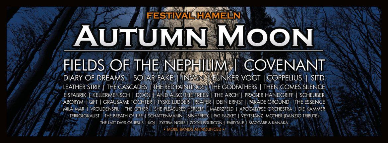 Autumn Moon Festival in Hameln