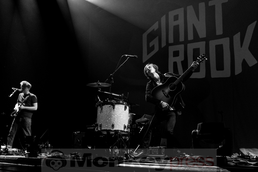 Giant Rooks © Angela Trabert