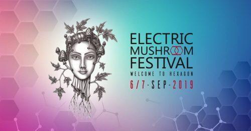 Im September 2019 steigt das ELECTRIC MUSHROOM FESTIVAL in Krefeld