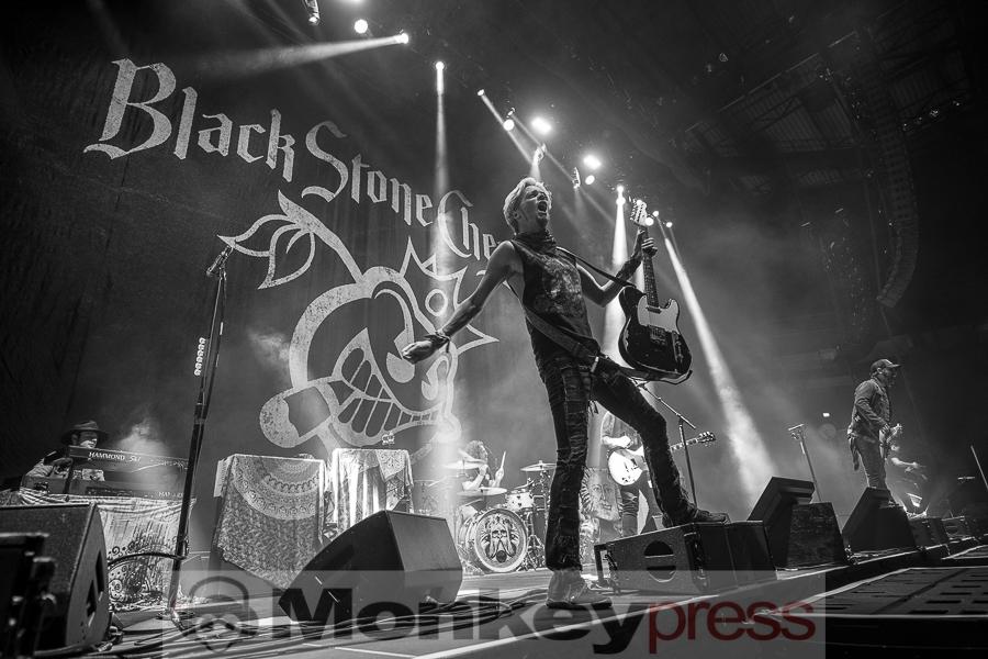 Black Stone Cherry, © Cynthia Theisinger