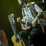 Fotos: SANGRE DE MUERDAGO