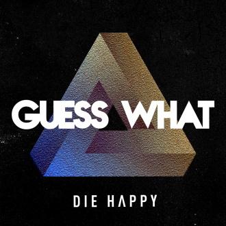 Interview: DIE HAPPY (Thorsten Mewes)